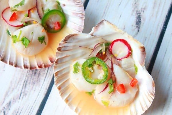 spicy scallop ceviche presented in pretty shell bowls