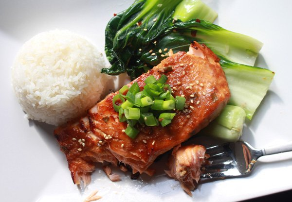 miso glazed salmon on a white plate with a side of white rice and baby bok choy