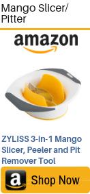mango slicer pitter