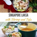 Singapore laksa with shrimp, tofu, and rice noodles in a bowl
