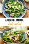 avocado-edamame kale salad in a blue bowl with a fork and avocado on the side